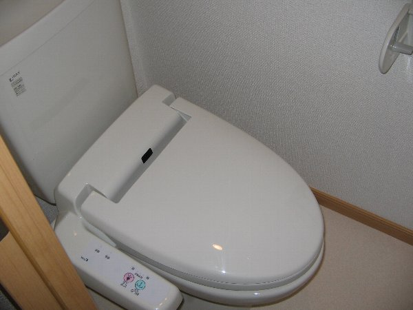 メゾン ソレイユ 01030号室のトイレ