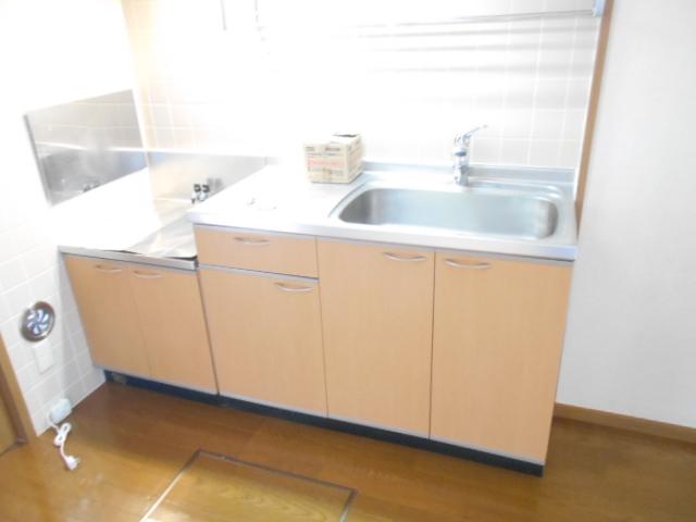 カーサ・カルマーレ 01010号室のキッチン