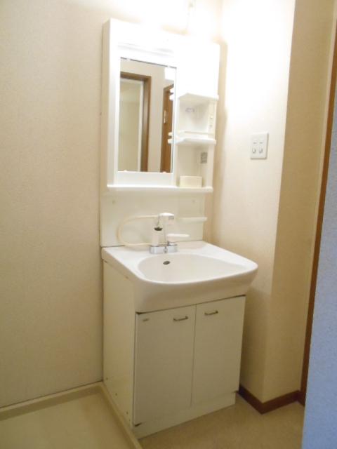 カーサ・カルマーレ 01010号室の洗面所