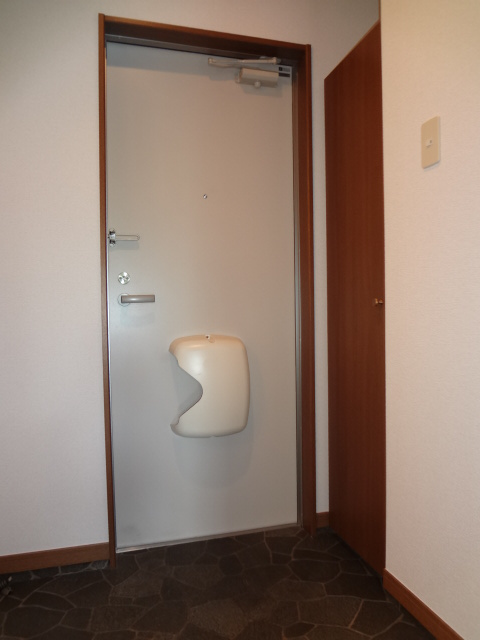 ツイン・ミラージュ 02030号室の玄関