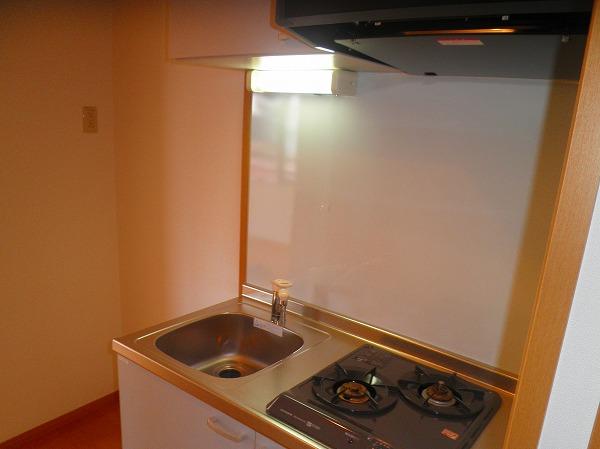 アベェニュー田園調布 05020号室のキッチン