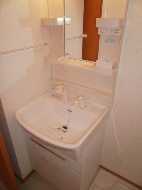 アベェニュー田園調布 05020号室の洗面所