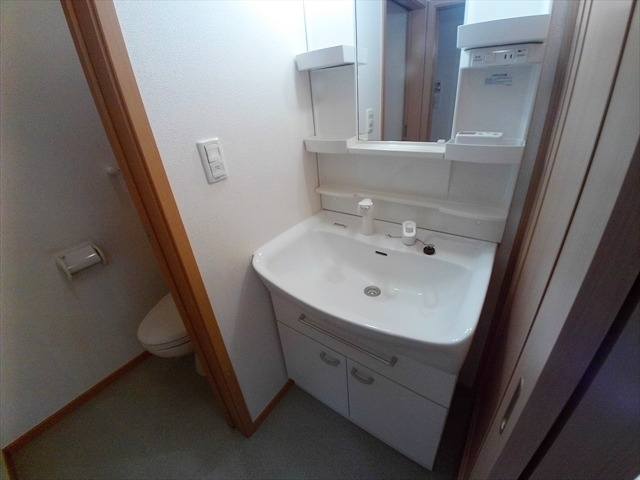 バ-ミィ・ブリ-ズ 02040号室の洗面所