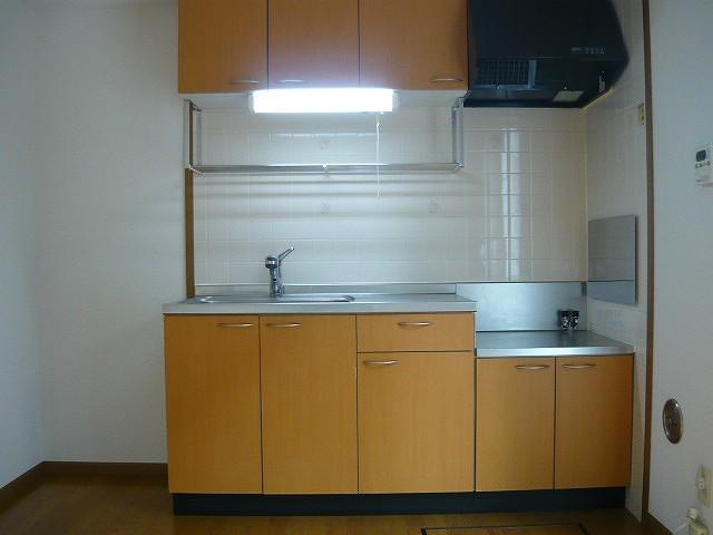 メゾン リュエル Ⅰ 01020号室のキッチン