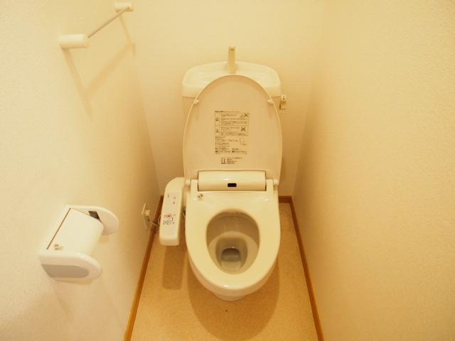 メゾン・アローン 01030号室のトイレ