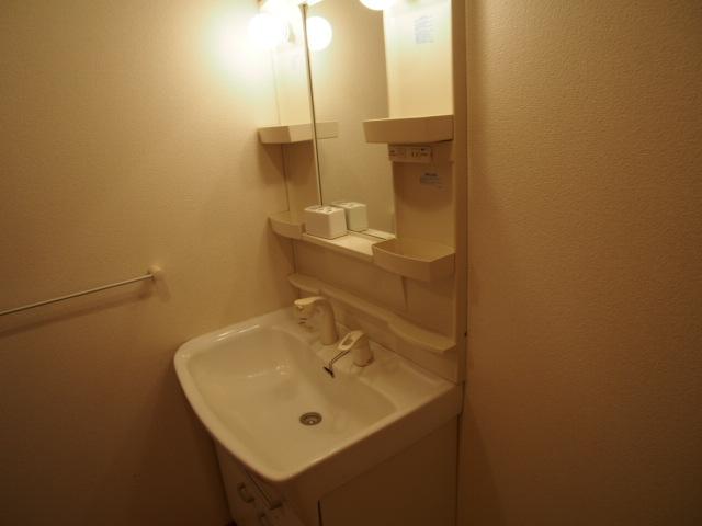 メゾン・アローン 01030号室の洗面所