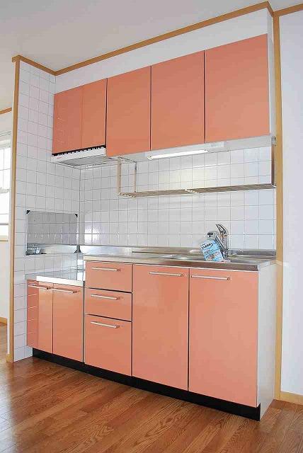 エンブレス野中 B 02040号室のキッチン