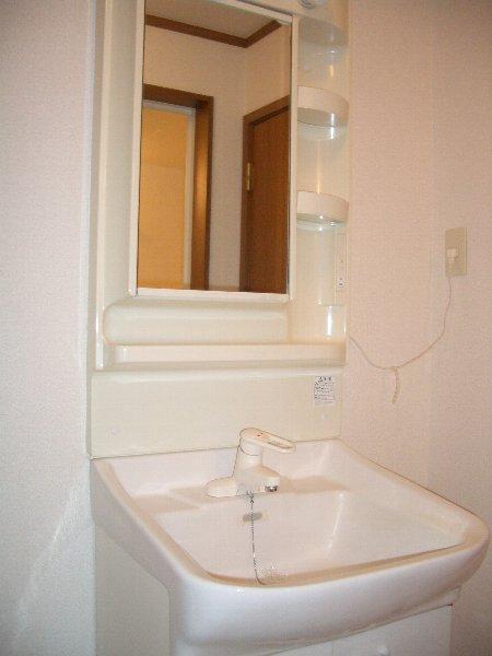 ラベンダー・K 02020号室の洗面所