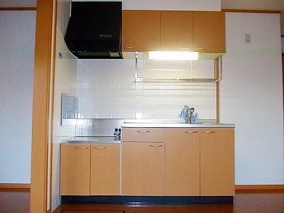 メイプルタウン壱番館 01030号室のキッチン