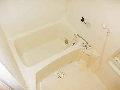 メイプルタウン壱番館 01030号室の風呂