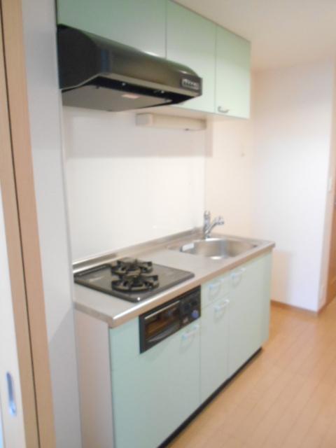 プレ・アビタシオン春日部Ⅱ 01050号室のキッチン