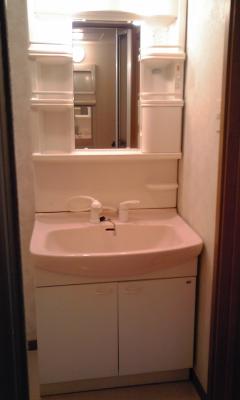 ファイン・セレ-B 02020号室の洗面所