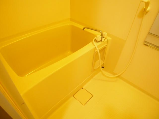 ルミエールハウス 02010号室の風呂