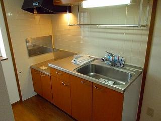 ラフィーネイズミ 02030号室のキッチン