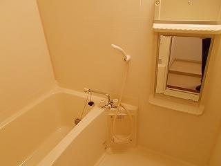ラフィーネイズミ 02030号室の風呂