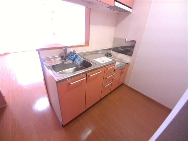 アネシス・参番館 01020号室のキッチン
