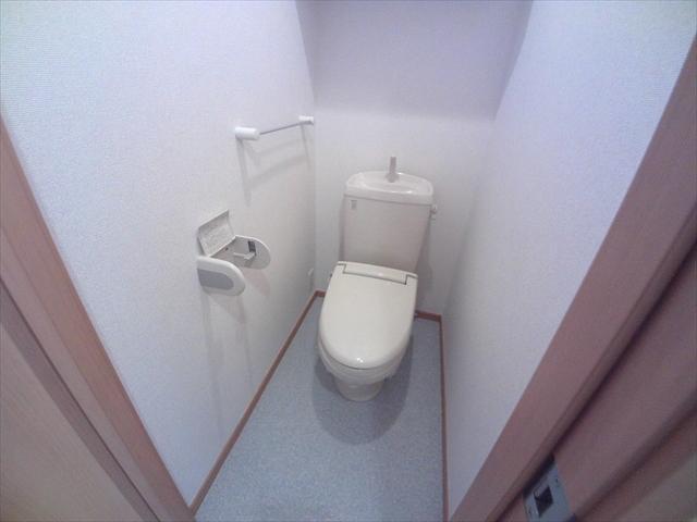 アネシス・参番館 01020号室のトイレ