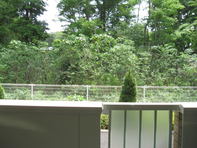 サンライズグリーンパーク 01030号室の眺望