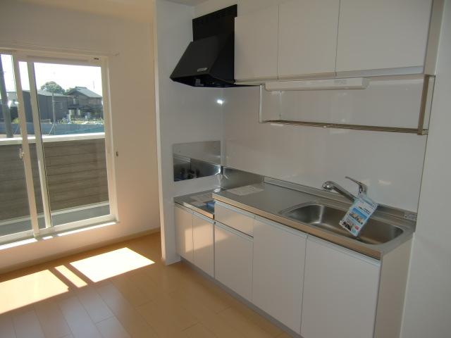 フォルトゥーナ・デーア 02010号室のキッチン