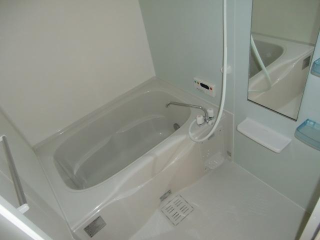 フォルトゥーナ・デーア 02010号室の風呂