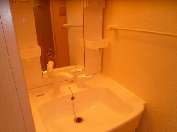 ベル・フルール 02010号室の洗面所