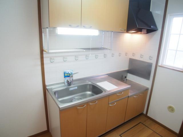 アヴェニールイズミ 01030号室のキッチン