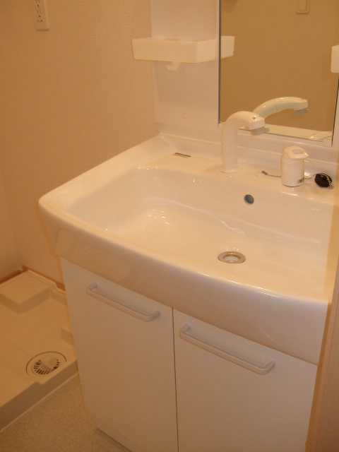 プラシードⅢ番館 02030号室の洗面所