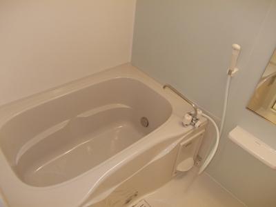ライフアクシス 02030号室の風呂