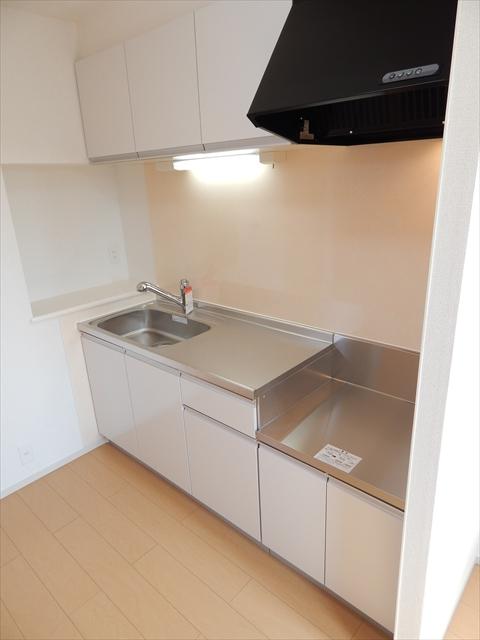 セレーノ・カーサ 02010号室のキッチン
