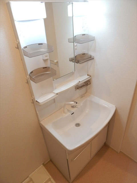 セレーノ・カーサ 02010号室の洗面所