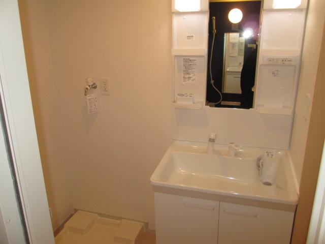 グランツY.S Ⅱ 02010号室の洗面所