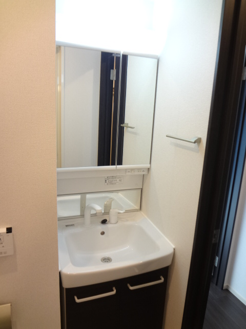 ペルペトゥウスⅡ 01010号室の洗面所