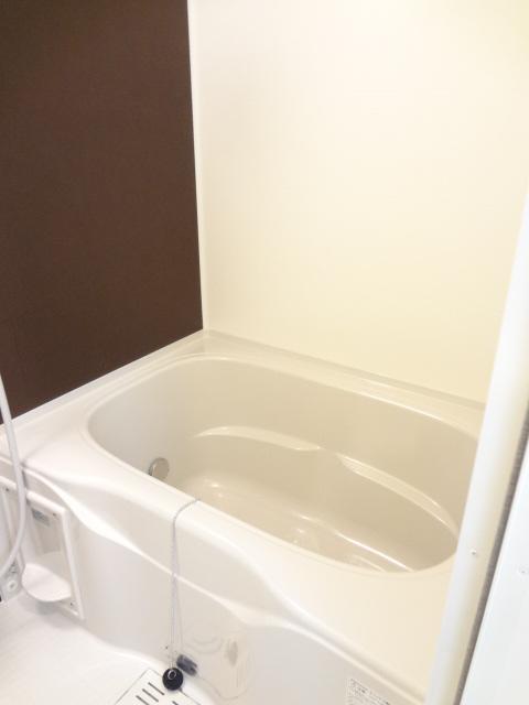 ペルペトゥウスⅡ 01010号室の風呂
