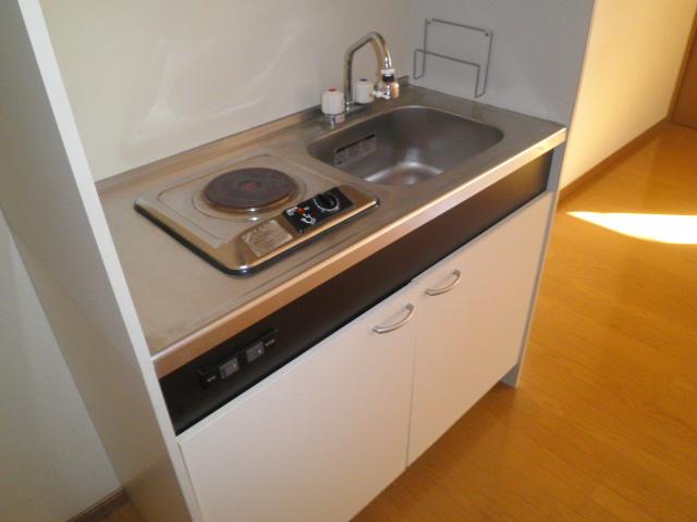 サンハイツ南浦和 201号室のキッチン