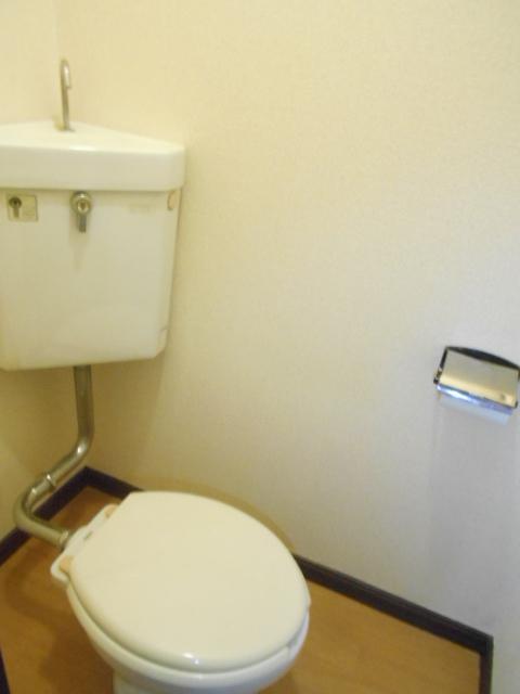 スカイハイツ古川 203号室のトイレ