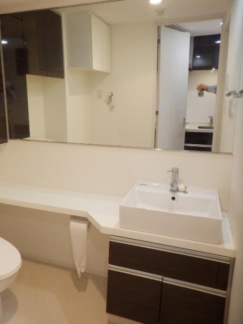 プレミアムコート都立大学 505号室の洗面所
