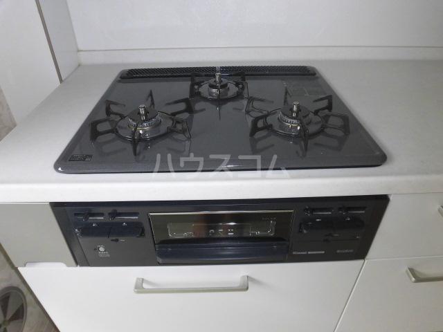 カーザ・ディ・ルーチェ 202号室のキッチン