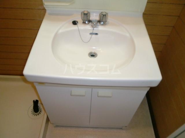 プリンシパル浦和 302号室の洗面所