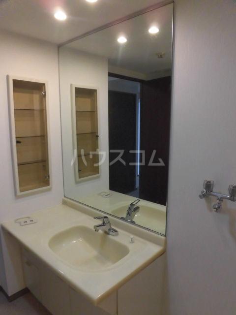 レジデンス浦和 202号室の洗面所
