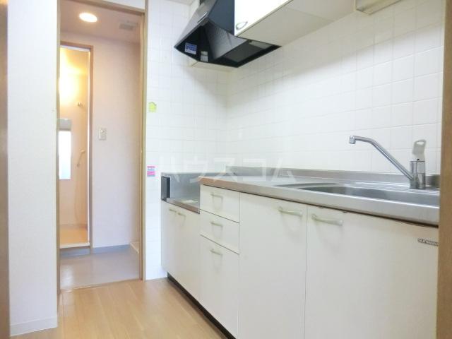 ミレニアム北浦和 B棟 207号室のキッチン