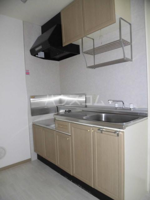 レジデンス・ツジムラⅢ 101号室のキッチン