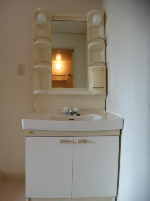 ガーデンシティ住吉 203号室の洗面所