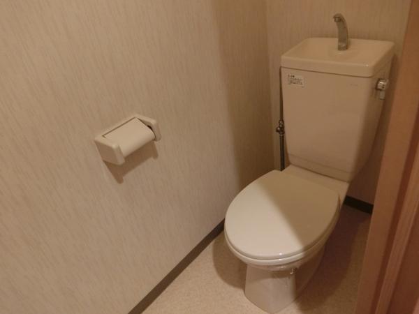 ヌーベルバーグ 302号室のトイレ