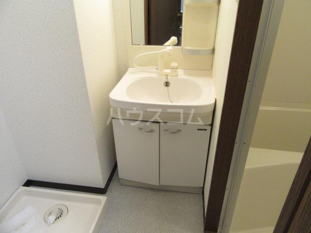 マンションアルティア Ⅱ 105号室の洗面所