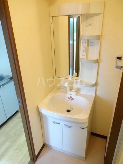D-FELLOW 502号室の洗面所