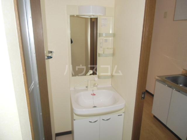D-FELLOW 506号室の洗面所