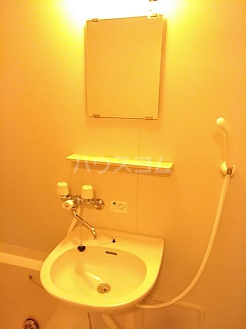 アメニティ・M 501号室の洗面所