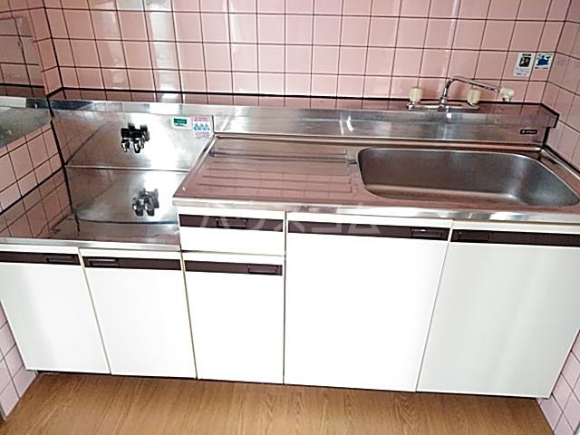 アメニティ・M 501号室のキッチン