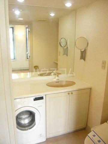 ミュゼ駒沢 102号室の洗面所