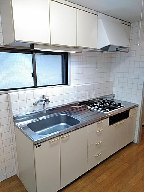 DUEX PRISM 3C号室のキッチン